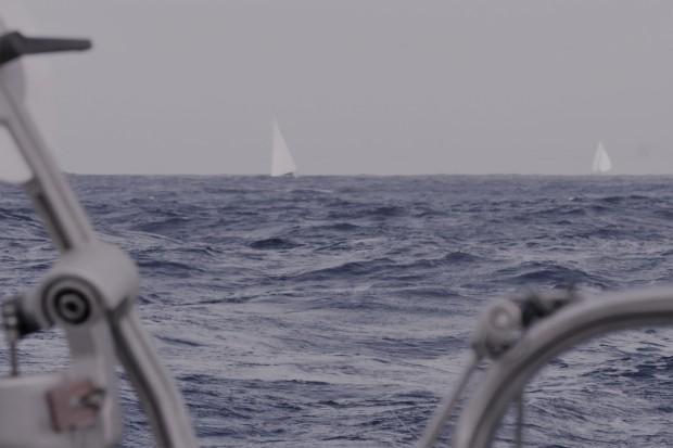 admiraalzeilen
