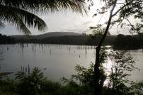 Brokopondo stuwmeer, Ston Island
